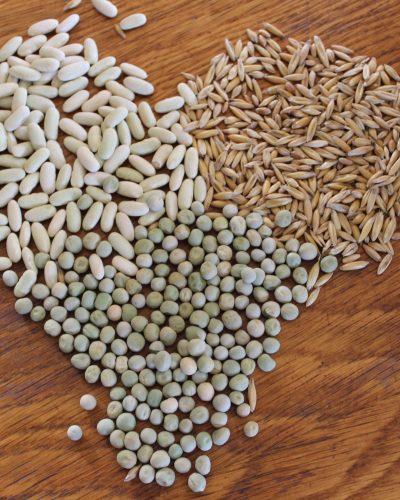 Seeds-seedlings of hope