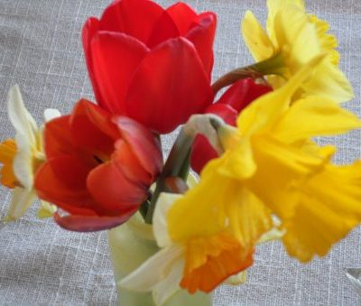 Spring bouquet - season for singing