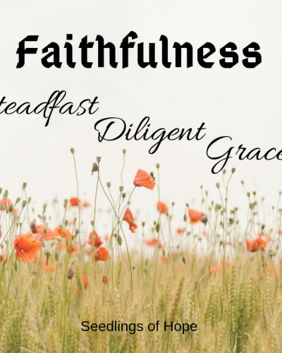 Faithfulness - Steadfast Diligent Grace