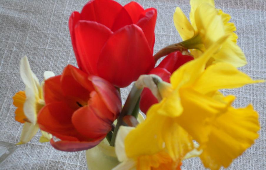 springbouquet-about